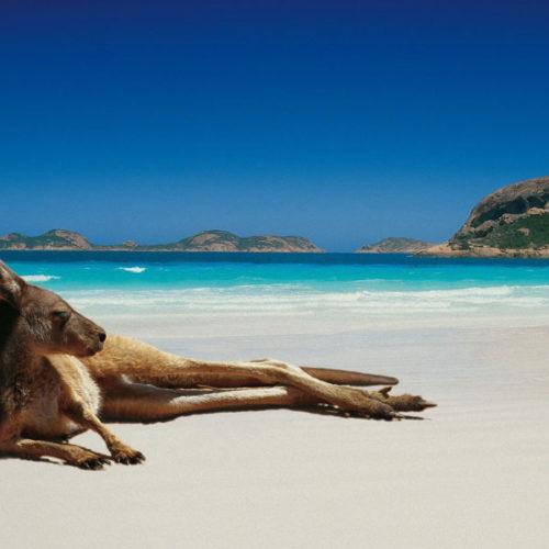 viaggio-di-nozze-australia1