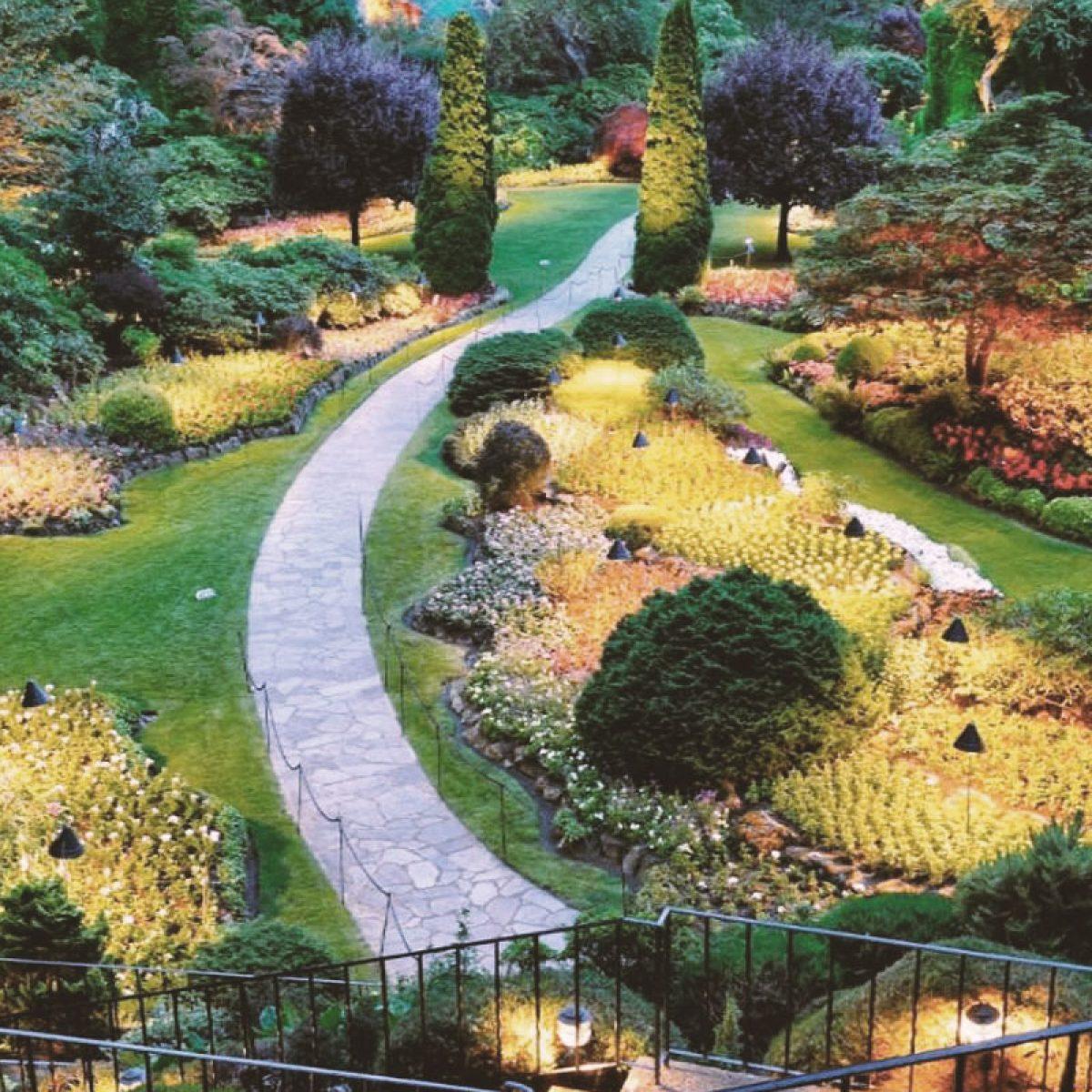 immagini-articoli-botanico